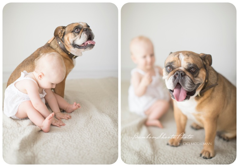 Baby and Pet photography is featured on the blog www.bambooshoots.com.sg/blog/