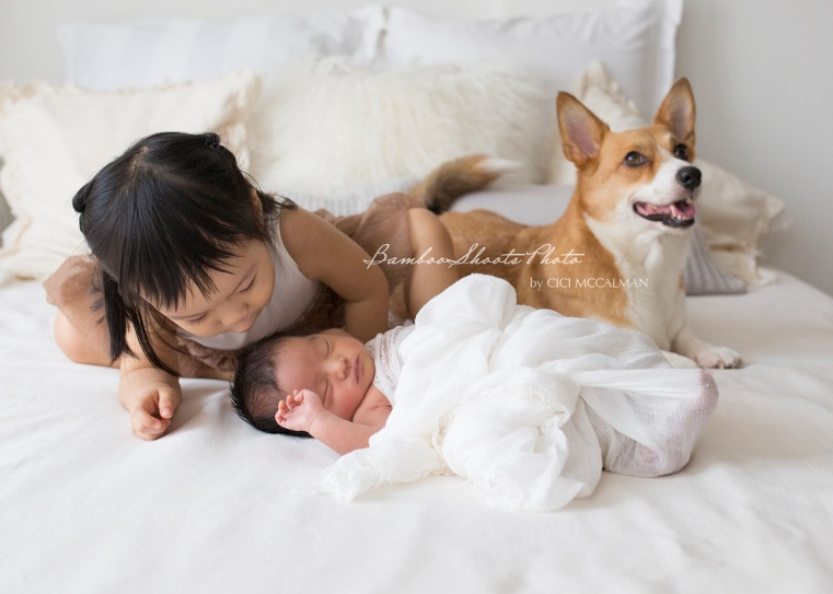 sibling and newborn photography